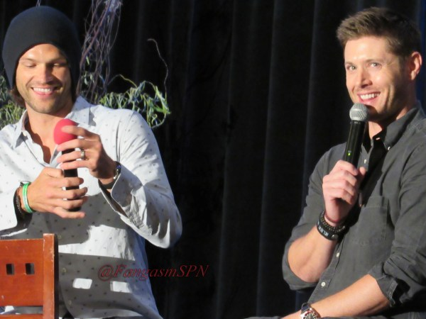 Comic Con and DCCon 2015 673