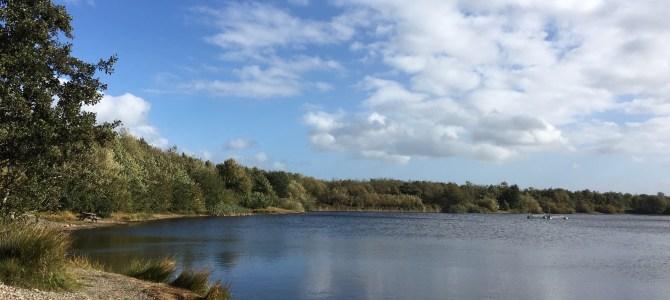 Mjøls Lystfiskeri: I dag sættes der fisk ud i begge søer…