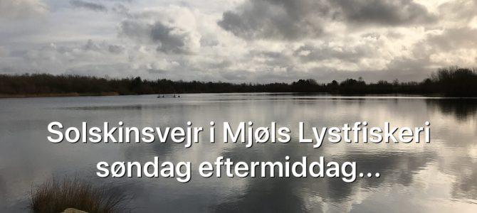 Solskinssøndag i Mjøls Lystfiskeri