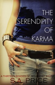 Review: The Serendipity of Karma by S.A. Price