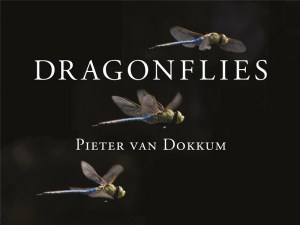 Dragonflies_Cover
