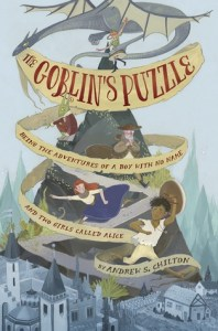 Cover for The Goblin's Puzzle by Andrew S Chilton