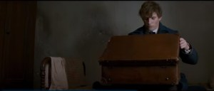 Scamander looks into a brown suitcase