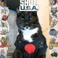 Bloodshot Cat Cosplay