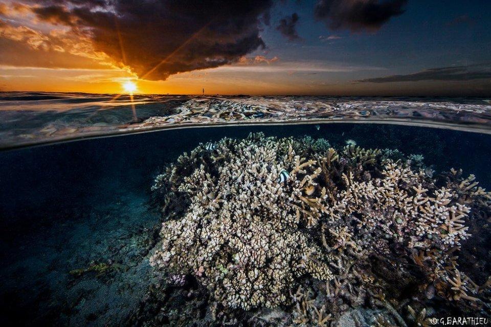 15 photos entre terre et mer-Blographisme-10