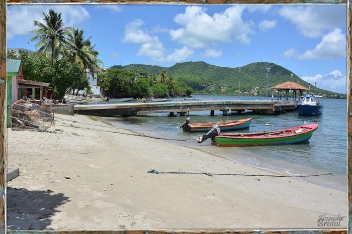 Que fait que voir à sainte-luce en Martinique
