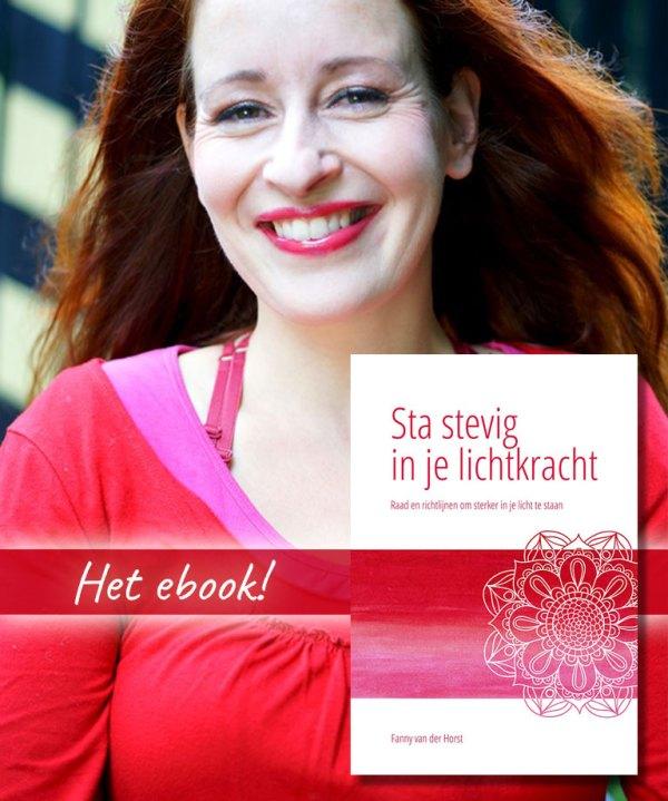 ebook Sta stevig in je Lichtkracht door Fanny van der Horst