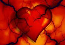 tekening van hart en bloedvaten