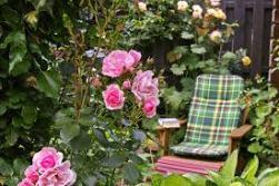 tuinstoel in tuin