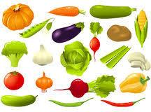 vector van diverse groenten