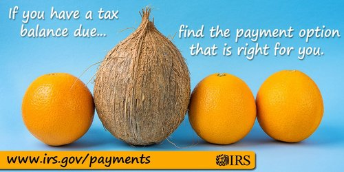 IRSDirectPay IRS