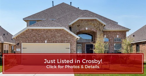 JUST LISTED! 13711 Spectacled Bear Ln, Crosby, TX