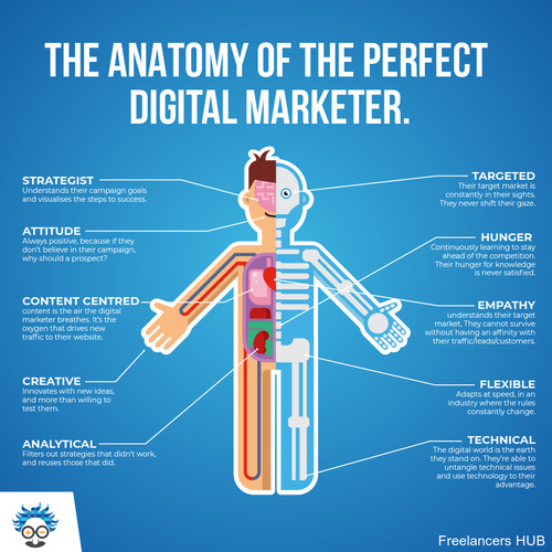 marketing digitalmarketing business infographic anatomy entrepreneur marketingtrend einsteinmarketer education learning