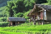 Eco-Palms-House-homestay