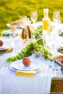 Pop- Backyard Dinner Party - Fantabulosity