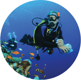 Fantasea Diving and Watersports |
