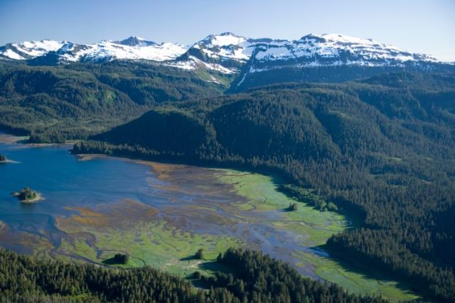 Tongass National Forest - Biggest Rainforests