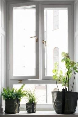 Fönster Norr Mälarstrands Blommor