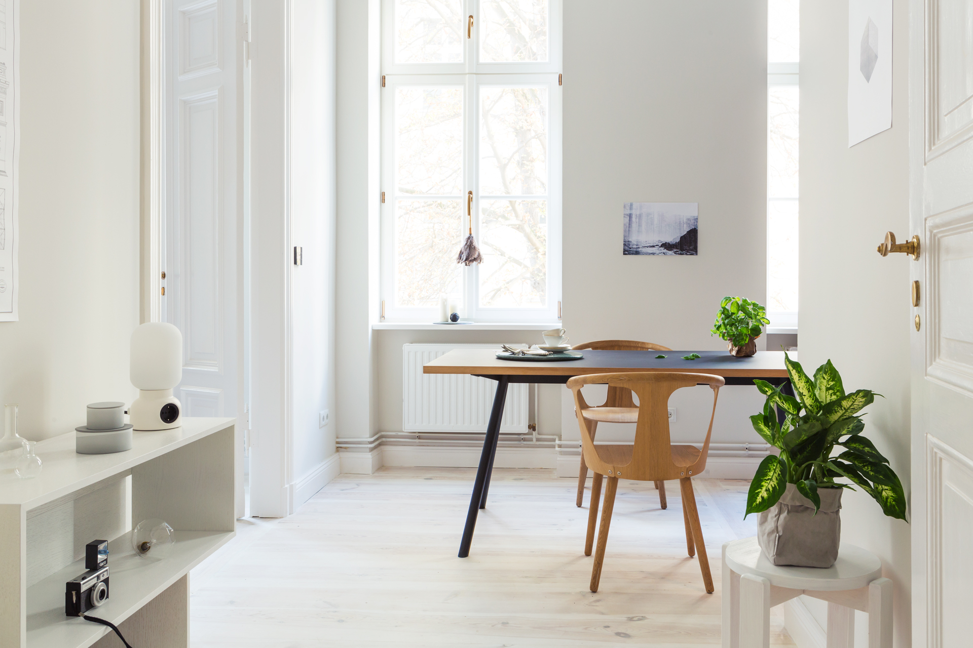 Selected Interiors 5  New Tendency x Fantastic Frank
