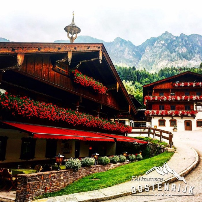 Bloemenzee Alpbach Aniela van den Brink