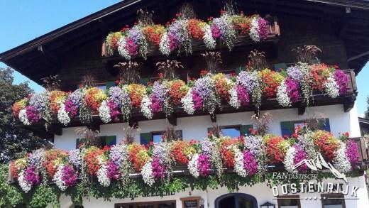 Bloemenzee deze zomer in Oostenrijk?