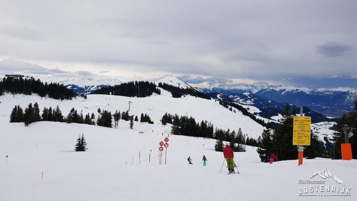 SkiWelt Hohe Salve Scheffau