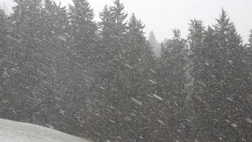Gaat het binnenkort opnieuw sneeuwen?