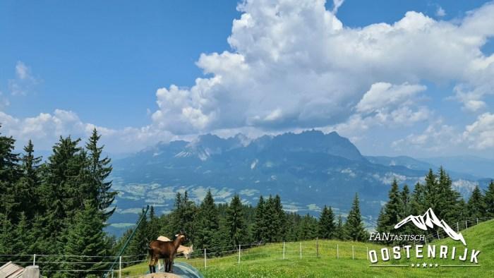 St Johann in Tirol uitzicht op Wilderkaiser