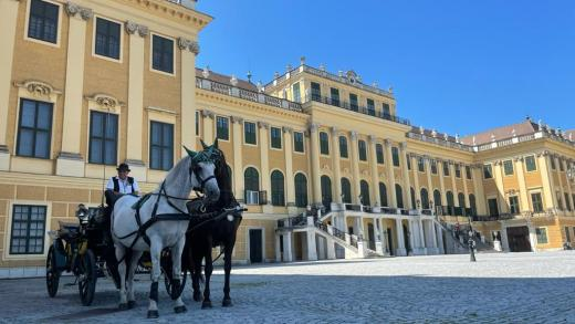 De stad Wenen, Prater, Schönbrunn en meer