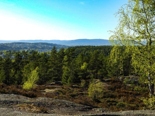 Utsikt mot Tryvannshøgda fra St. Hansåsen - Oslomarka - Østmarka - Fantastiske marka