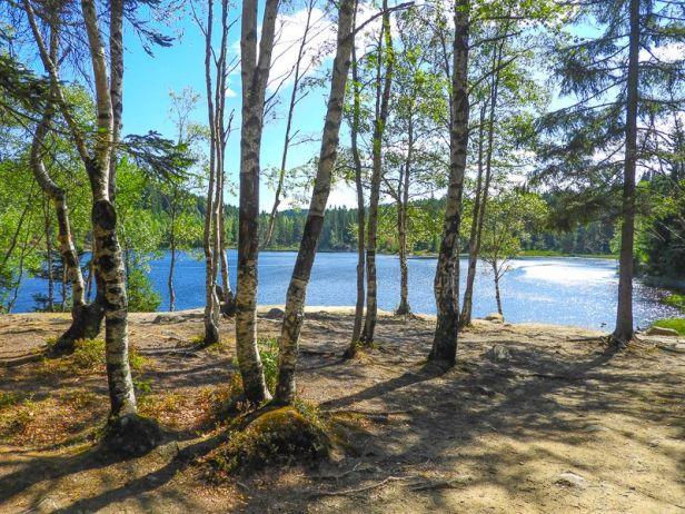 Teltplass ved Skredderudtjern - Oslomarka - Lillomarka - Fantastiske marka