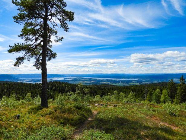 Utsikten fra gapahuken på Borgersæterhøgda - Oslomarka - Krokskogen - Fantastiske marka