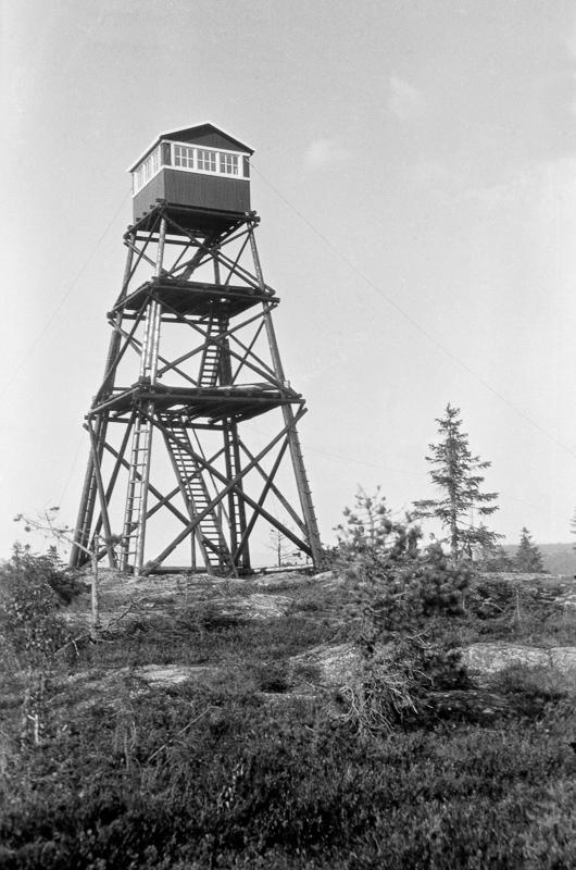 Julius Nygaard - Kolleren - Anno Norsk Skogmuseum - 1932