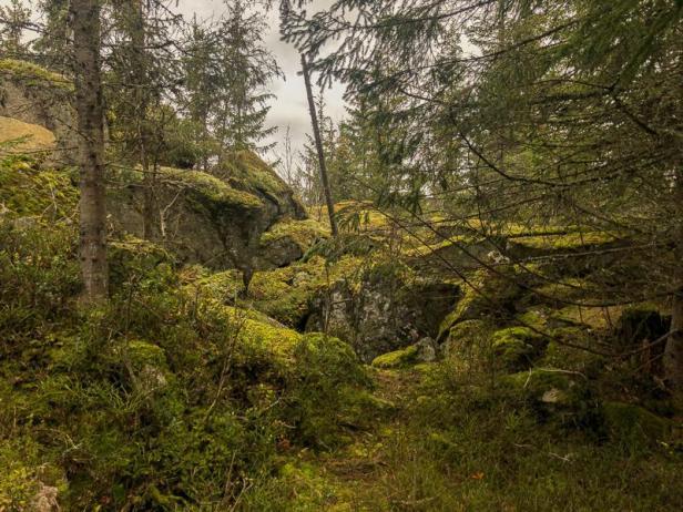 Godt skjult inngang til Finnegrotta på Krokskogen - Oslomarka - Fantastiske marka