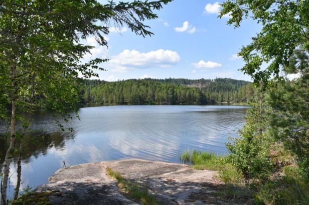 Stordammen i sommervær - badeplass - Kjekstadmarka - Oslomarka - Fantastiske marka