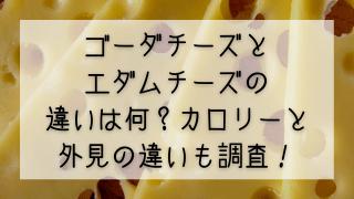 ゴーダチーズとエダムチーズの違いは何?カロリーと外見の違いも調査!