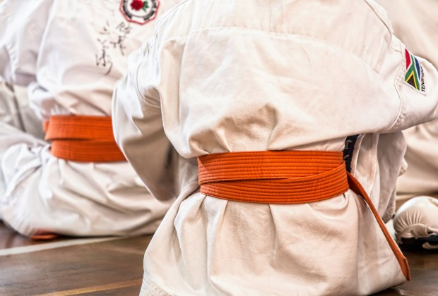 Martial Arts (Stock Feature)