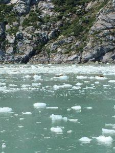 Fantasy Aisle, alaska travel recommendations, Harris Bay, Gulf of Alaska, ice falling from the glaciers