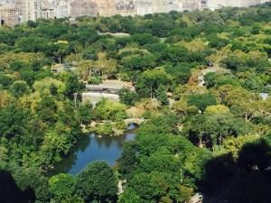 Fantasy Aisle, Central Park, the heart of New York City