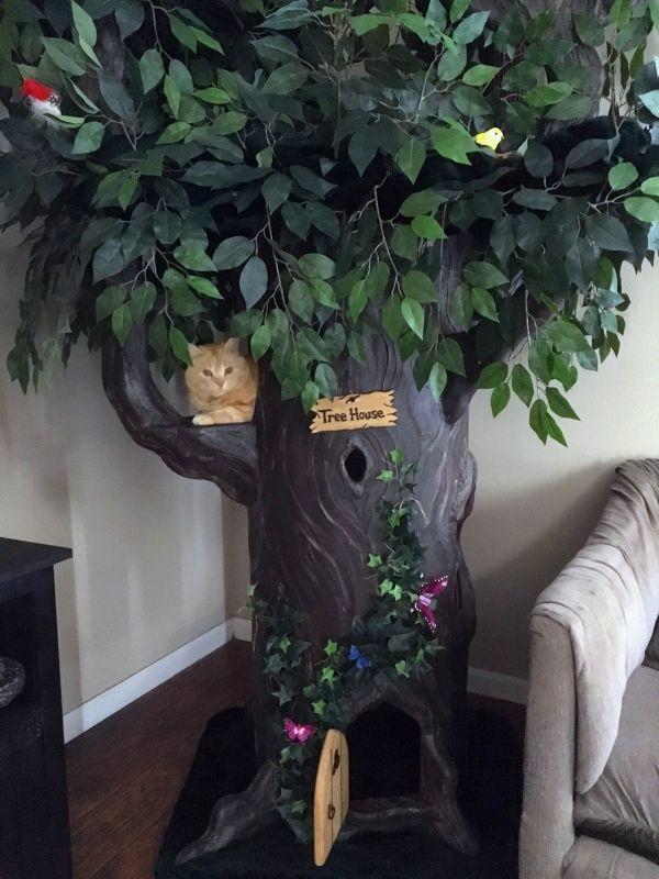 how to decorate the living room design idea fantasy cat trees - forest