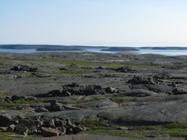 Sample Site for Fossil Discovery