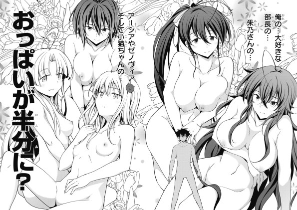High School DxD manga vol.08 (21-22)