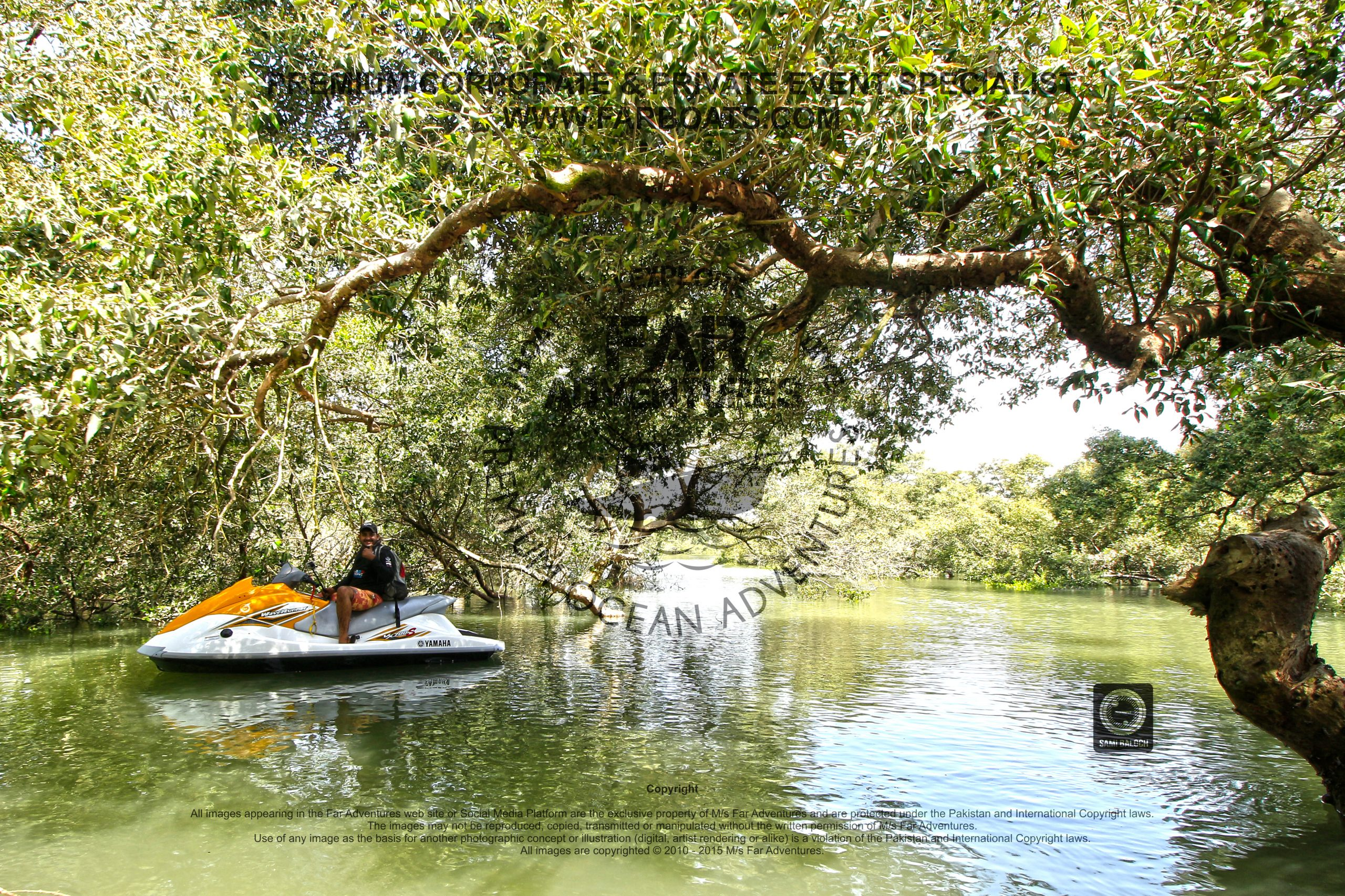 EXCLUSIVE MANGROVE FOREST EXPEDITION