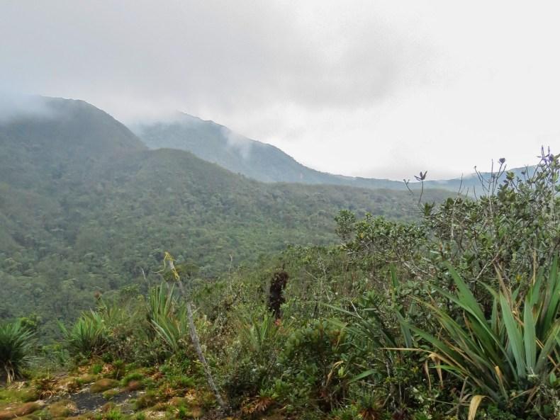 Departamento del Chocó desde el cerro Monte Blanco, Vereda La Mina, Ciudad Bolívar, Antioquia