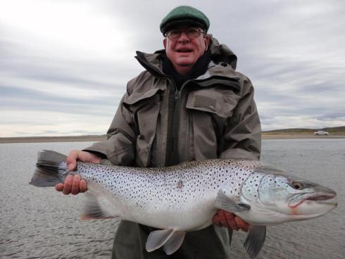 sea run brown trout on the rio grande
