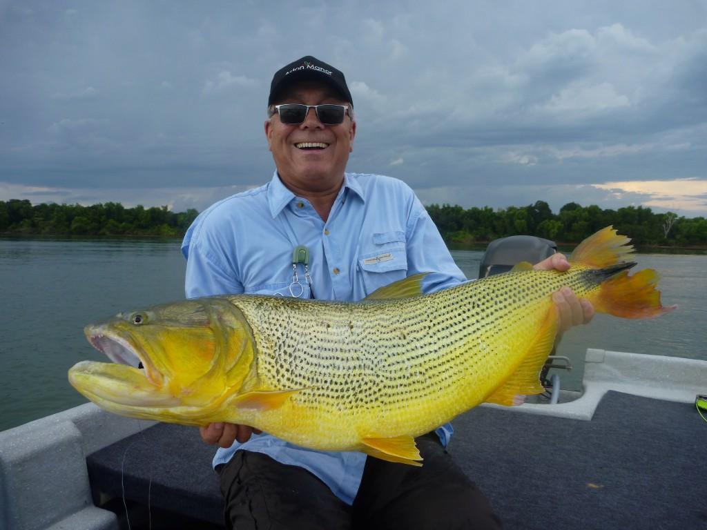 Monster Dorado from Parana River