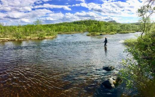 For the most part, the river is small (15-30m), easy towade and ideal for fishing with a single hand rod.