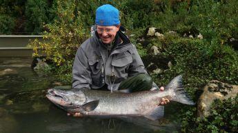 King salmon Chile
