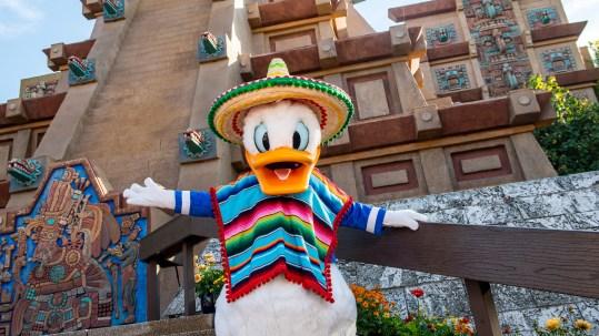 Disney Pals - Donald