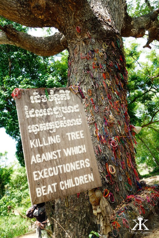 Seeing Red Khmer Rouge and The Killing Fields  Far East